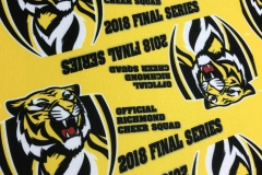 pennant-felt-richmond-2018-finals-series-001