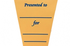 pennant-satin-blair-state-school-awards-day-001