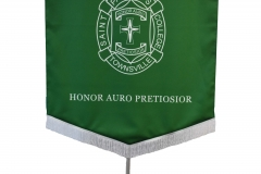 processional-banner-saint-patricks-townsville-004