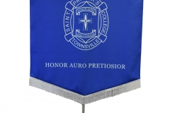 processional-banner-saint-patricks-townsville-005
